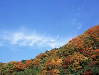 雪国魅力:北海道、札幌、洞爷湖豪华赏雪半自助五日游(北京起止