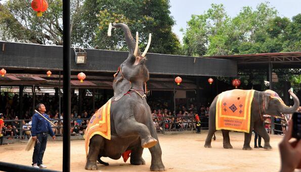 千禧澜沙:泰国曼谷芭