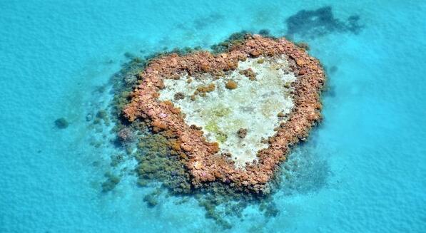 澳礁奇缘:澳大利亚、新西兰、凯恩斯十二日游