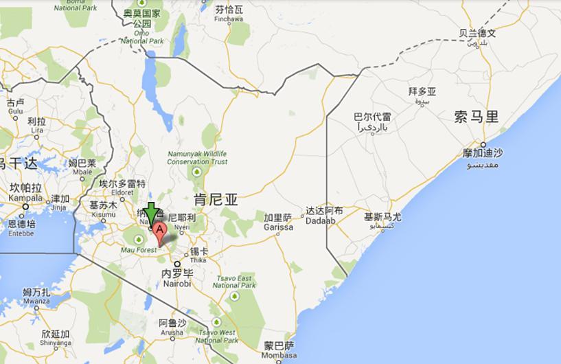 河南中青旅,郑州中青旅,肯尼 亚