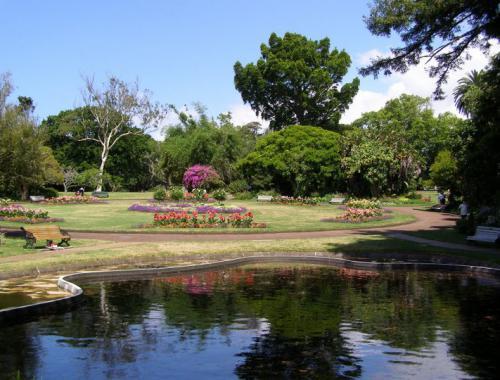 郑州中青旅,河南中青旅,郑州旅行社,新 西兰奥克兰公园