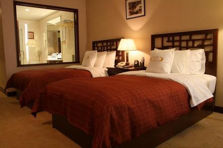 郑州旅游公司,河南旅游公司,郑州青年旅行社,大 同天贵国际酒店