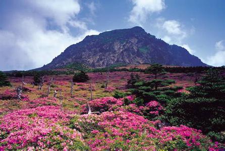 郑州旅游公司,河南旅游公司,郑州青年旅行社,韩 国汉拿山
