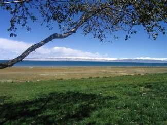 青海湖塔尔寺互助沙湖影视城岩画往返七日游