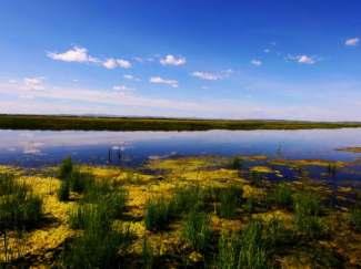 希拉穆仁草原、银肯福沙岛度假亲子双飞五日游