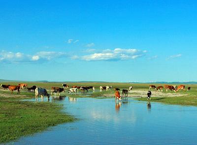 在赤相峰:赤峰、乌兰布统草原、达里湖、白音敖包双飞六日游(郑州包机直飞)