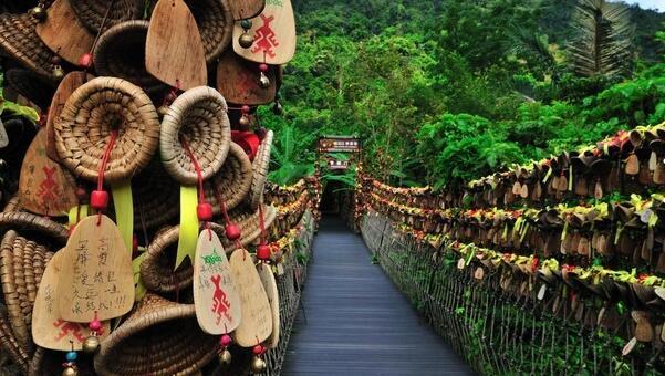 顶级红树林:海南三亚双飞五日游