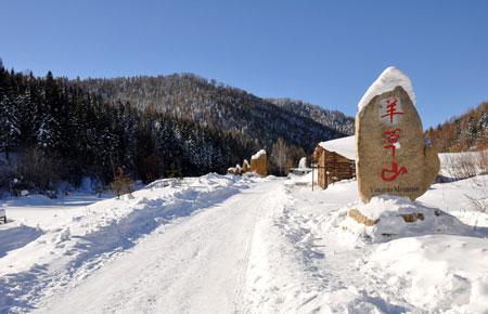 河南青年旅行社,郑州旅行社,东 北雪 乡