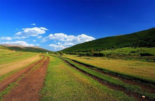 河南青年旅社,郑州中青旅,河 北坝 上 草原