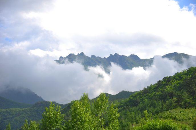 河南青年旅行社,郑州旅行社,河 北坝 上草原