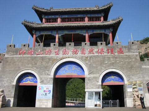 河南中青旅,郑州旅行社,山 东威 海