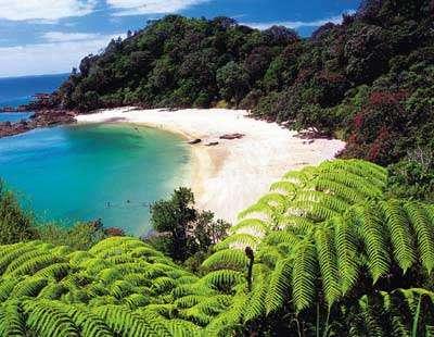 郑州中青旅,郑州中国青年旅行社,河南中青旅,新 西兰图图卡卡海岸