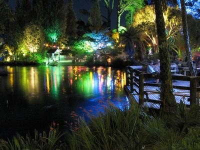 郑州青旅,郑州中青旅,郑州旅行社,新 西兰普克库拉公园