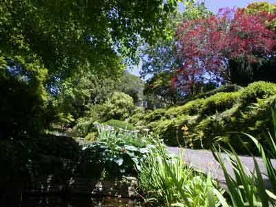 郑州中青旅,郑州青旅,郑州青年旅行社,新 西兰图培尔花园