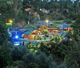 郑州青旅,河南青旅,郑州中青旅,新 西兰卡曼娜瓦森林公园