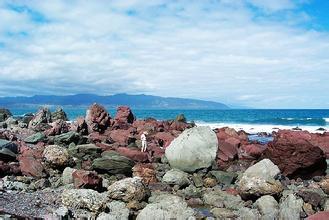 郑州中青旅,郑州青旅,河南青旅,新 西兰红岩保护区