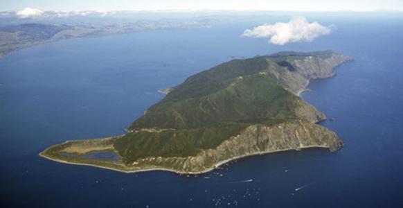 郑州中青旅,郑州青旅,河南青旅,河南中青旅,新 西兰卡皮蒂岛自然保护区