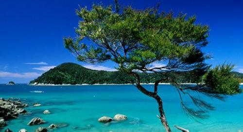 郑州中青旅,河南中青旅,郑州青旅,新 西兰亚伯塔斯曼国家公园