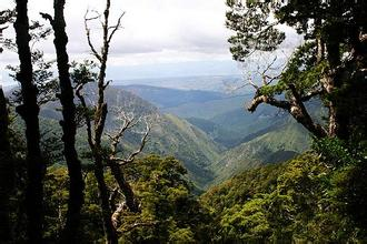 郑州中青旅,河南中青旅,郑州旅行社,新 西兰卡胡朗伊国家公园