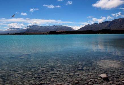 郑州中国青年旅行社,河南旅行社,河南青旅,新 西兰瓦卡蒂普湖