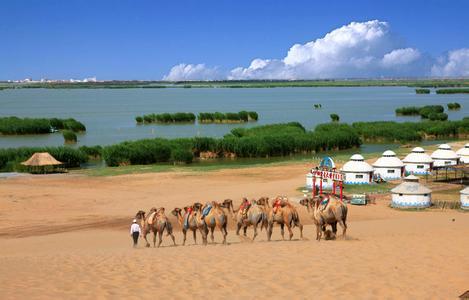 郑州旅游公司,河南旅游公司,中国青年旅行社,银 川沙湖
