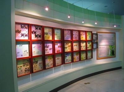 郑州旅游公司,河南旅游公司,郑州青年旅行社,韩 国PSYCHE WORLD