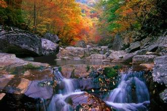 郑州旅游公司,河南旅游公司,郑州青年旅行社,韩 国智异山国立公园