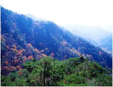 郑州旅游公司,河南旅游公司,河南旅游公司,韩 国俗离山国立公园