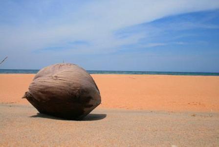 郑州旅游公司,河南旅游公司,郑州青年旅行社,热浪岛兰道阿邦海滩