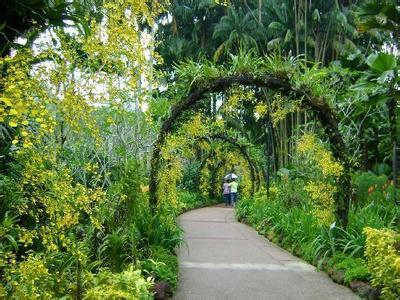 郑州旅游公司,河南旅游公司,郑州青年旅行社,新加 坡植物园