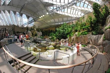 郑州旅游公司,河南旅游公司,郑州青年旅行社,加拿 大自然生态博物馆