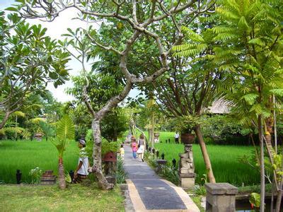 郑州旅游公司,河南旅游公司,郑州青年旅行社,巴 厘岛脏鸭子餐厅