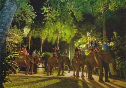 郑州旅游公司,河南旅游公司,郑州青年旅行社,新加 坡夜间动物园